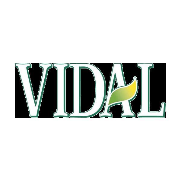 Manufacturer - VIDAL